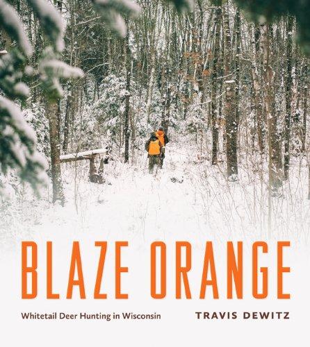 Blaze Orange – Whitetail Deer Hunting in Wisconsin